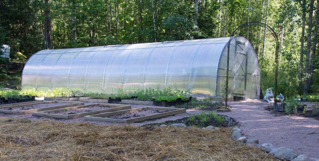 kasvihuone, jossa kaaren muotoinen kattoa